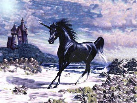 black unicorn hd wallpaper black unicorns 36 cool hd wallpaper hivewallpaper com