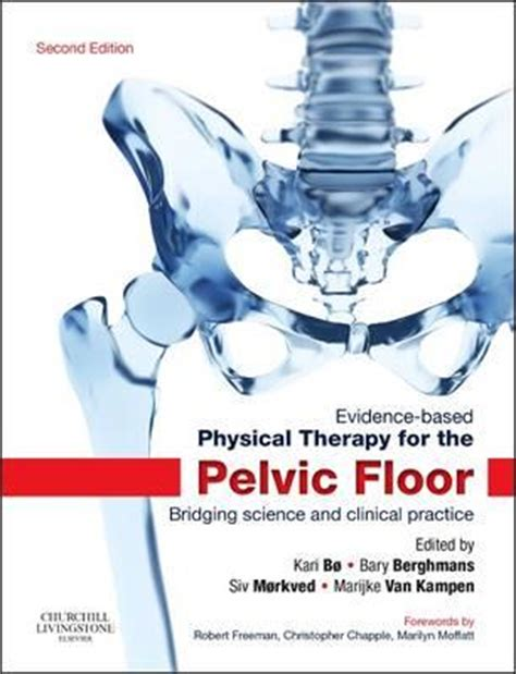 Pelvic Floor Physical Therapist by Evidence Based Physical Therapy For The Pelvic Floor