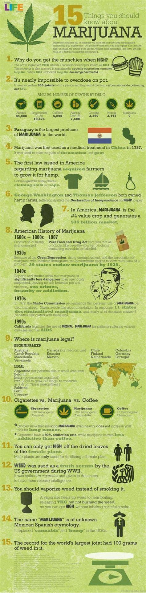 Marijuana Detox Facts by Best 25 Marijuana Facts Ideas On Facts