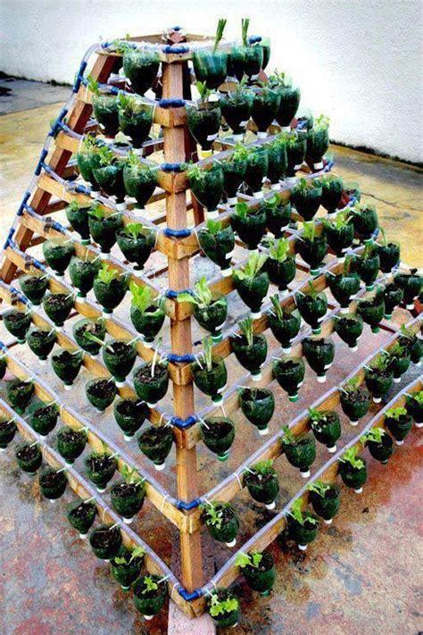 Salad Flower 3 Liter vertical gardening using 2 liter bottles diy
