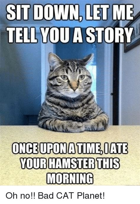 Bad Kitty Meme - 25 best memes about bad cat bad cat memes