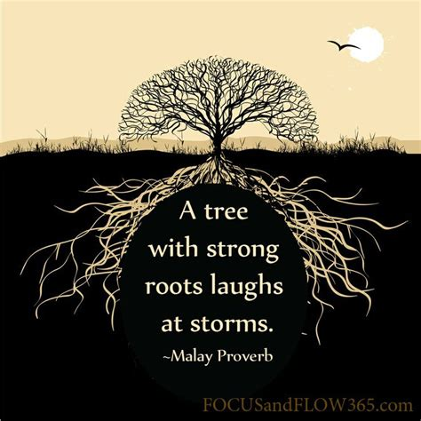 tree quote 25 best tree quotes on quotes on trees