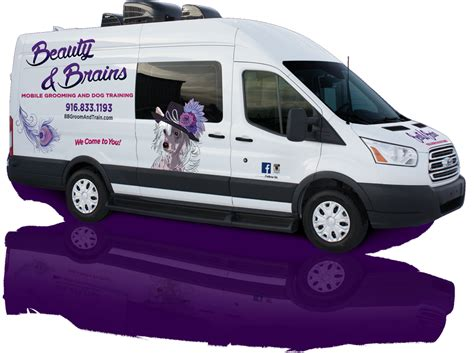 mobile groomer and brains grooming and citrus heights