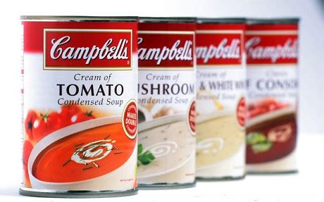 sopa urdu ingdrie ntes cbell s slammed for adding salt to soup telegraph