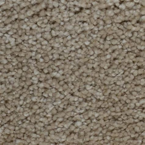 home decorators collection carpet sle spicework i