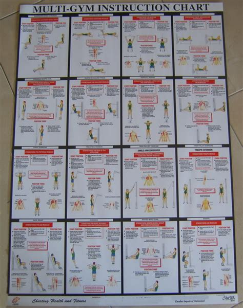 york 401 multi exercise chart york 401 compact