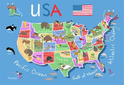 printable preschool map of the united states printable map of usa for kids its s a jungle in here