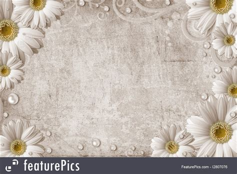 vintage background  daisy