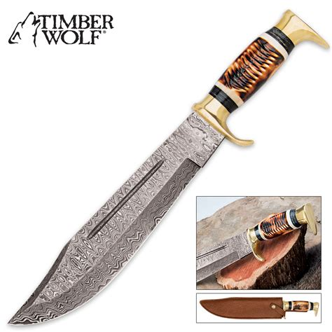 timber wolf knives timber wolf golden stag bowie knife kennesaw cutlery