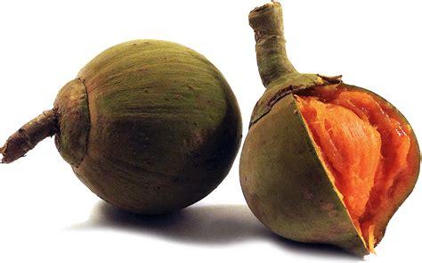 imagenes zapote negro 20 exotic spanish fruit names you ll encounter in latin