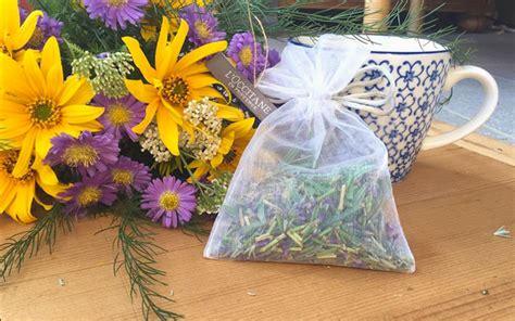 Lavendel Schneiden Und Trocknen by Lavendel Trocknen Und Vielseitig Verwenden