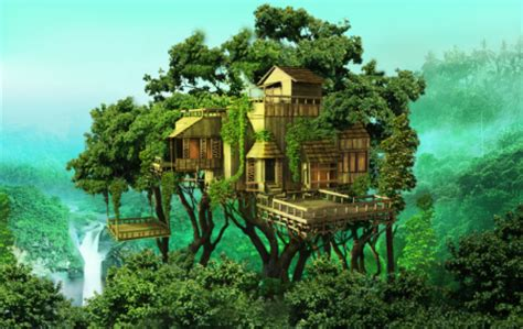 the house on paradise get those umbrellas ready the new rainforest home is now out