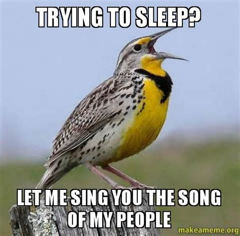 Trying To Sleep Meme - trying to sleep let me sing you the song of my people