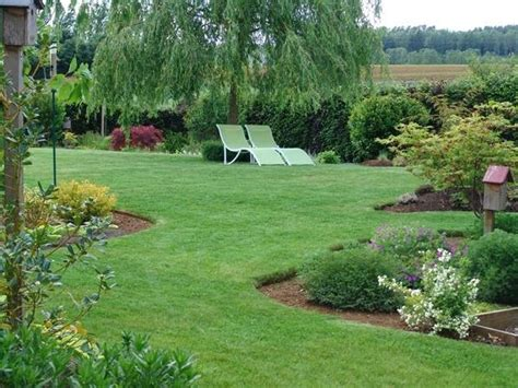 albero da giardino sempreverde piante da giardino sempreverdi piante da giardino le