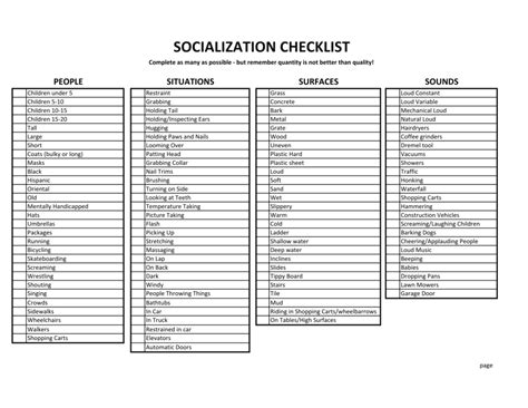 puppy socialization checklist the misanthropic shiba shiba inus dogs and humans in that order