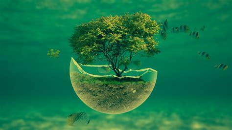 wallpaper background size abstract tree hd desktop wallpaper instagram photo