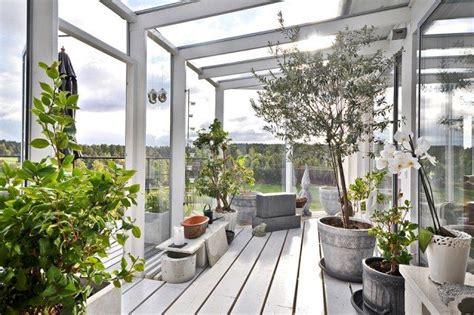 interior dekorieren ideen für wohnzimmer wintergarten gestaltungsideen pflanzen olivenbaum
