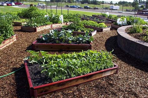 benefits of raised garden beds benefits of using smart beds for your raised bed gardening