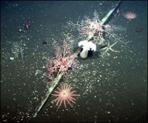 national marine sanctuaries condition reports monterey