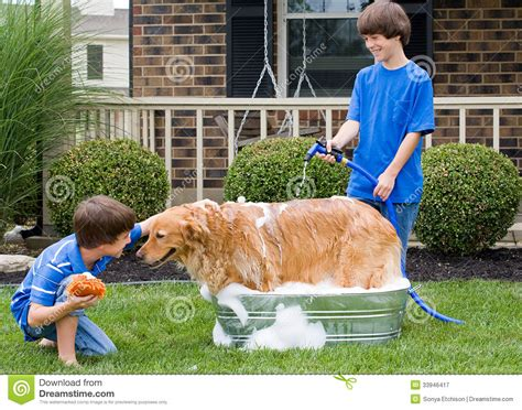how to give puppy a bath how to give a small a bath with pictures wikihow diy bath you ll an