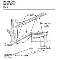 how to build a barn owl nest modern farmer