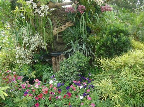 small tropical gardens photos