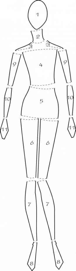 fashion illustration basics parts drawing and drawings on