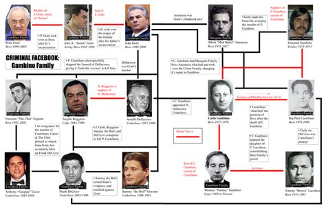 pipe dreams the plundering of iraq s wealth books the gambino family goes columbia club of