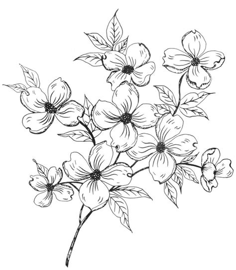 flower pattern to draw simple flower pattern drawing at getdrawings com free