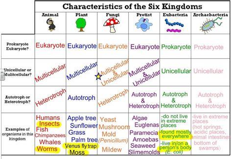 define biography characteristics kingdom protista definition characteristics exles