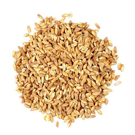 whole grains health whole grain health benefits and calories popsugar fitness