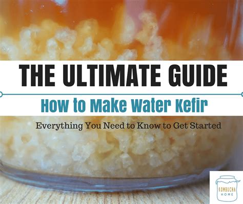 how to make water how to make water kefir the ultimate guide kombucha home