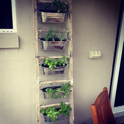 herb ladder container herb garden