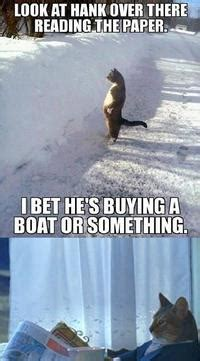 Cat Meme I Should Buy A Boat - i should buy a boat cat image gallery know your meme