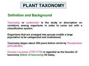 Definition Of Barn Plant Taxonomy