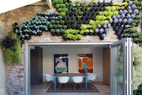 vertical gardens in brisbane sydney melbourne wall