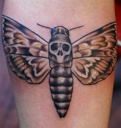 dead head tattoo designs moth tattoos designs ideas and meaning tattoos for you