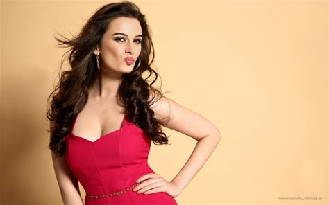 bollywood actresses with pictures evelyn sharma bollywood actress wallpapers hd wallpapers