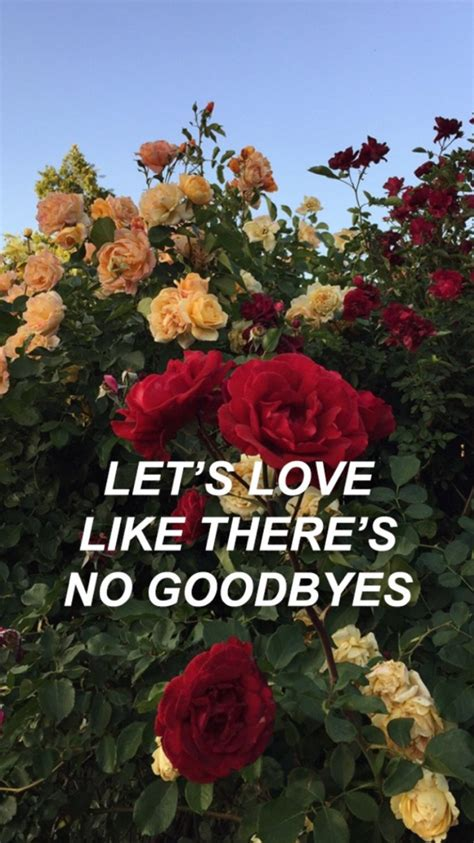 dua lipa no goodbyes lyrics fuckwallpapers tumblr com dua lipa lyrics please don t