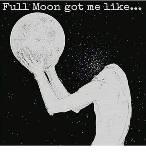Full Moon Meme - full moon got me like meme on sizzle