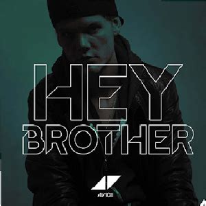 what does sog what does the song hey by avicii song