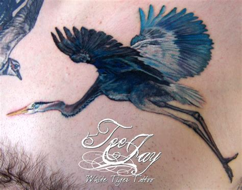 heron tattoo blue heron meaning www imgkid the image kid