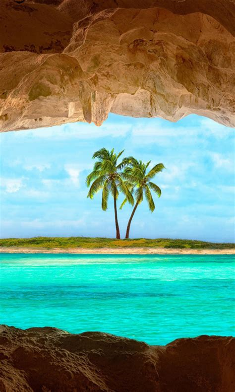 Live Palm Tree Wallpaper by Free Island With Palm Tree Live Wallpaper Apk For
