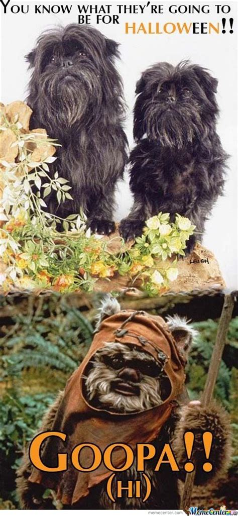 Ewoks Meme - ewok dogs by sataira meme center