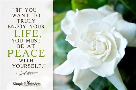 Gardenia Quotes Quotes By Cy N Peace Like Success