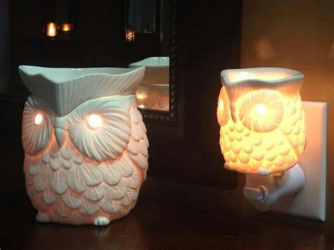 scentsy owl warmer light bulb scentsy whoot warmer jessicagross scentsy us scentsy