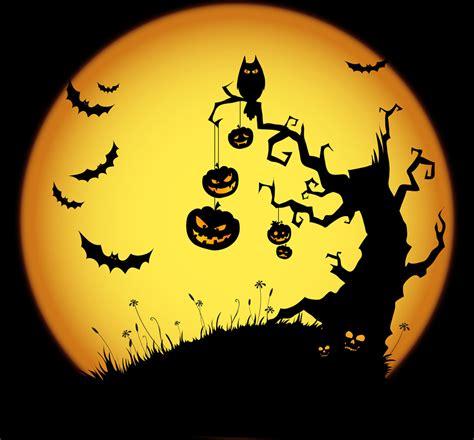 Home Decor Blogs Usa by Le Livroscope Hello Halloween 2012 La Potion Magique De