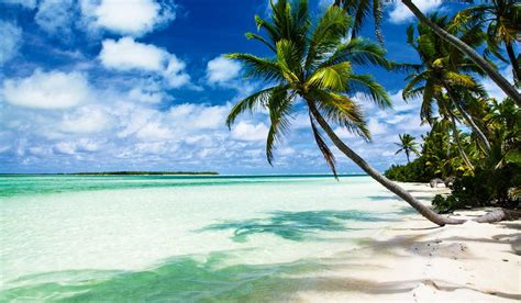 coco island 100 incredible travel secrets 36 cocos keeling islands