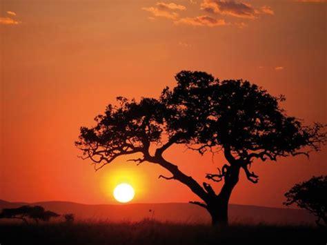 Syari Kanita safari kenia compleet 001 de wereld is kras