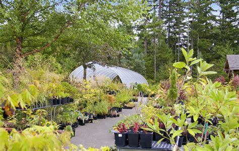 wshg net glenwood gardens exploring plant textures